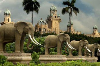 Les plus grands casinos d'Afrique
